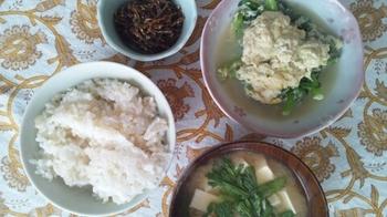 20110223昼食.jpg